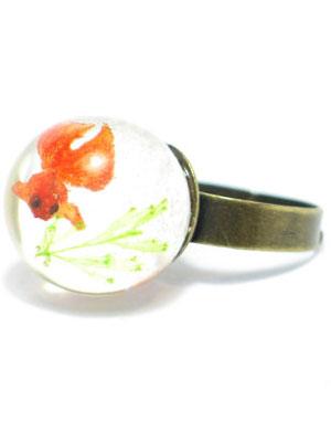 anillo pecera