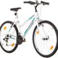 Bicicleta mujer Probike