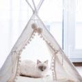 Cama mueble de diseño para gatos
