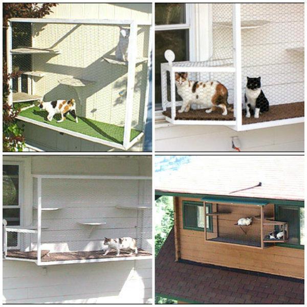 jaula ventana gatos