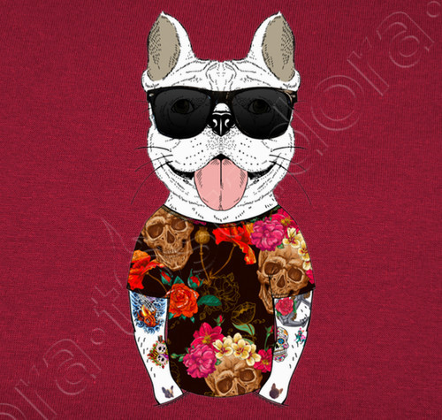 jersey frenchie