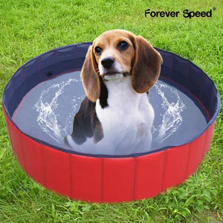 piscina plegable perros