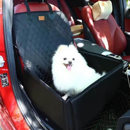transportin perro
